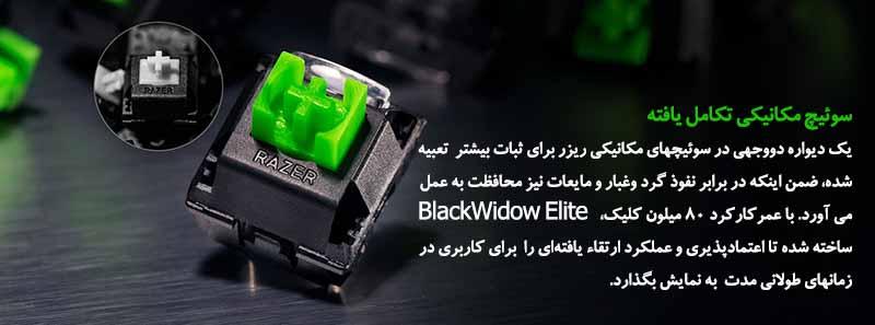 BLACKWIDOW ELITE ORANGE SWITCH